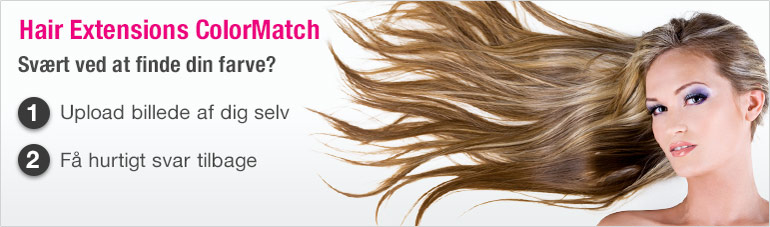 Hair Extensions ColorMatch
